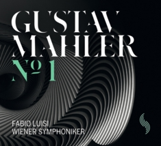 mahler_no1_cover.jpg